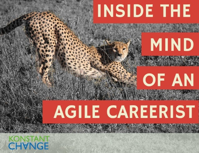Inside the Mind of an Agile Careerist