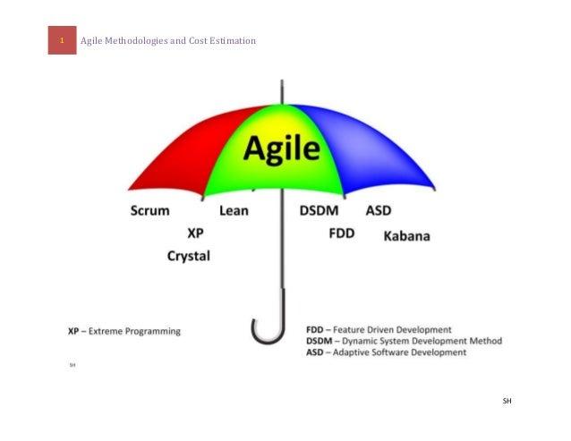1 Agile Methodologies and Cost Estimation  SH