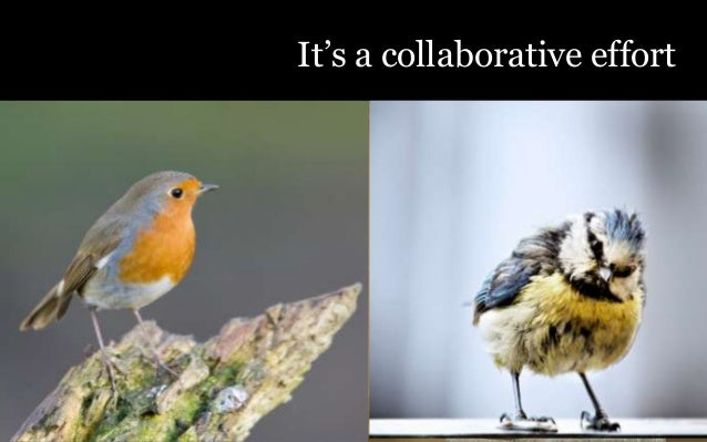 """It""""s a collaborative effort"""
