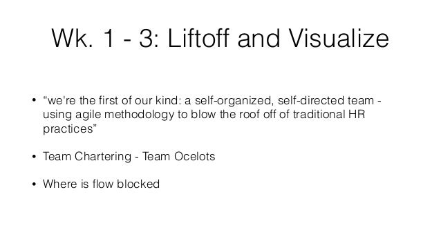 """Wk. 1 - 3: Liftoff and Visualize • """"we're the first of our kind: a self-organized, self-directed team - using agile methodo..."""