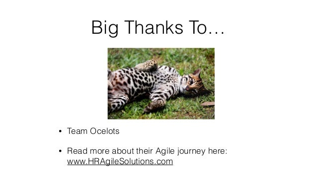 Big Thanks To… • Team Ocelots • Read more about their Agile journey here: www.HRAgileSolutions.com