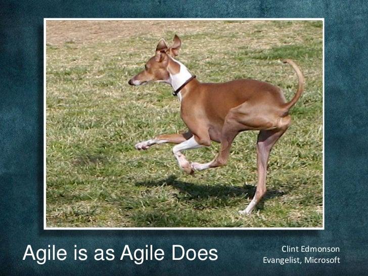 Agile is as Agile Does<br />Clint Edmonson<br />Evangelist, Microsoft<br />