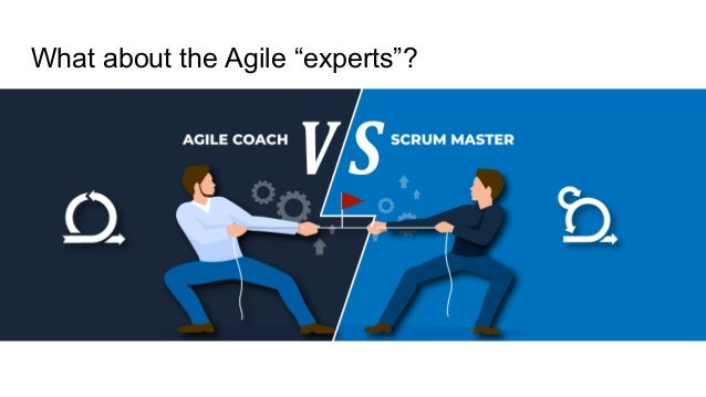 """What about the Agile """"experts""""?"""