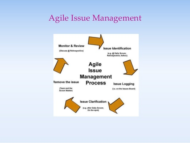 Sample Issue Management Plan – Template for Confronting Issues