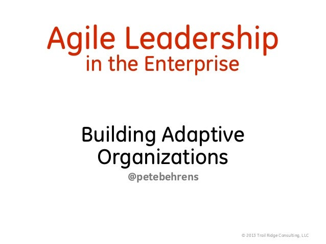 © 2013 Trail Ridge Consulting, LLC Agile Leadership