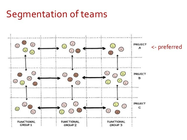 The Management 3.0 Model Six organizational views based on complexity thinking
