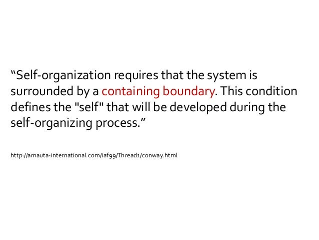 Self-organized For example: a software development team Self-selected (= self-designed) Self-organized and system selects ...