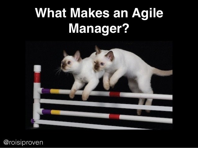 What Makes an Agile Manager? @roisiproven