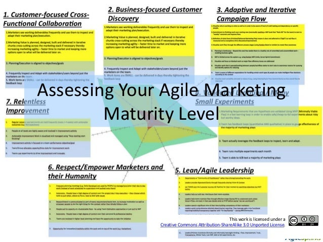 Assessing Your Agile Marketing Maturity Level This work is licensed under a Creative Commons Attribution-ShareAlike 3.0 Un...