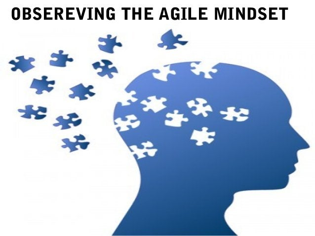 OBSEREVING THE AGILE MINDSET
