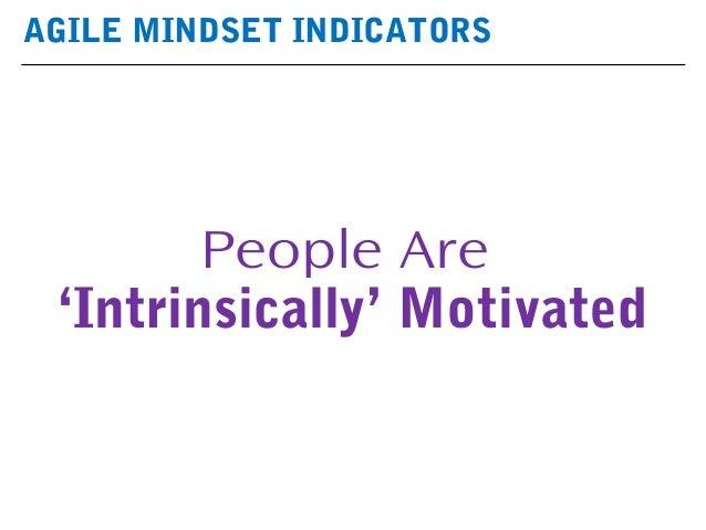 AGILE MINDSET INDICATORS People Are 'Intrinsically' Motivated