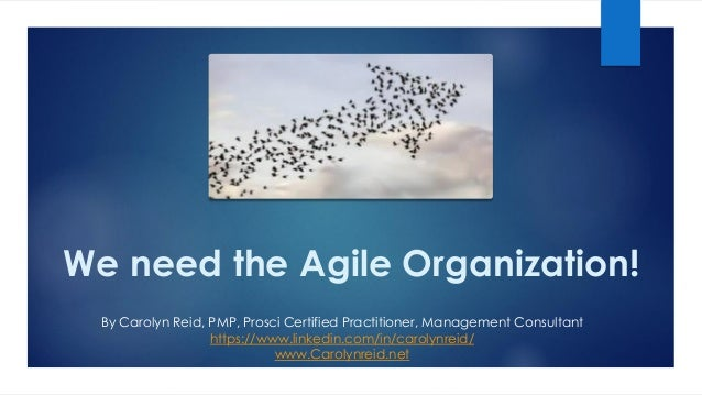 We need the Agile Organization! By Carolyn Reid, PMP, Prosci Certified Practitioner, Management Consultant https://www.lin...