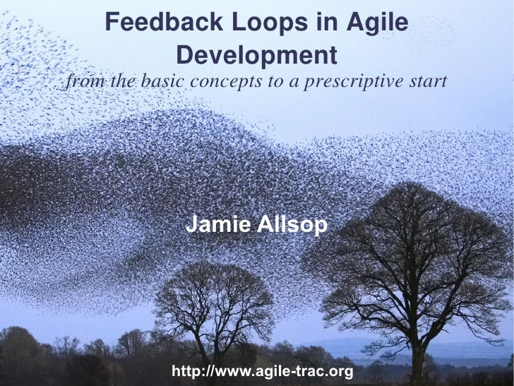 Feedback Loops in Agile         Developmentfrom the basic concepts to a prescriptive start              Jamie Allsop      ...