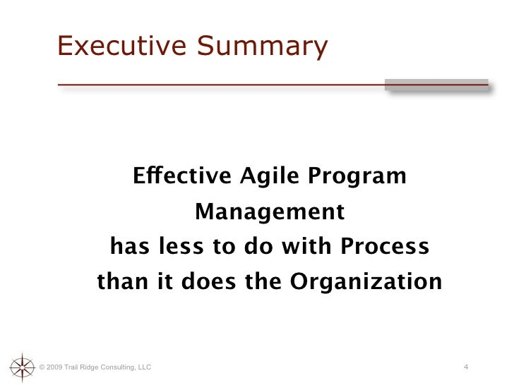 Agile Program Management Best Practices