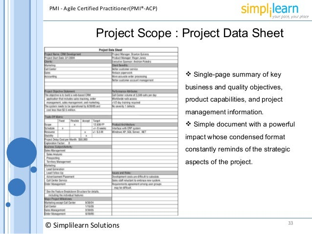 Sample Project Sheet Projected Balance Sheet Template Sample
