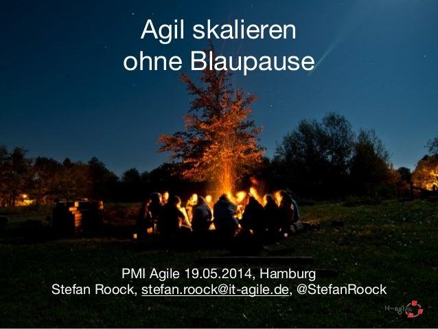 Agil skalieren  ohne Blaupause PMI Agile 19.05.2014, Hamburg  Stefan Roock, stefan.roock@it-agile.de, @StefanRoock