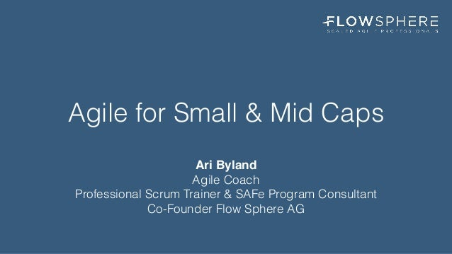 Agile for Small & Mid Caps Ari Byland Agile Coach 