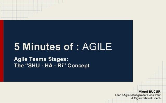 "5 Minutes of : AGILE Agile Teams Stages: The ""SHU - HA - Ri"" Concept Viorel BUCUR Lean / Agile Management Consultant & Org..."