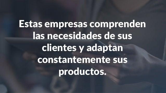 Estas empresas comprenden las necesidades de sus clientes y adaptan constantemente sus productos.