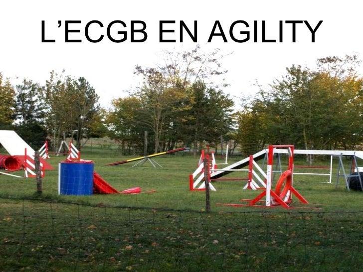 L'ECGB EN AGILITY