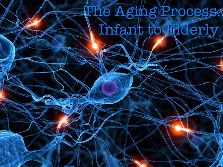 The Aging Process: Infant to Elderly