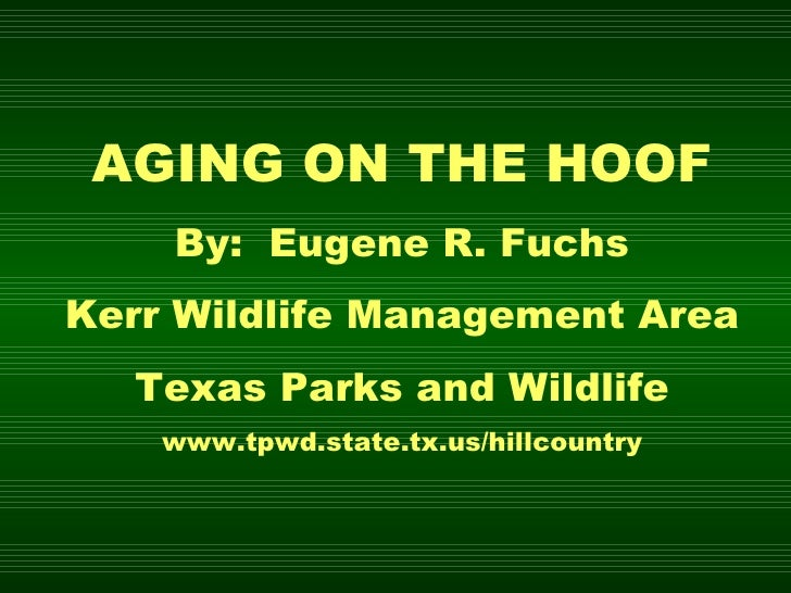 AGING ON THE HOOF By:  Eugene R. Fuchs Kerr Wildlife Management Area Texas Parks and Wildlife www.tpwd.state.tx.us/hillcou...