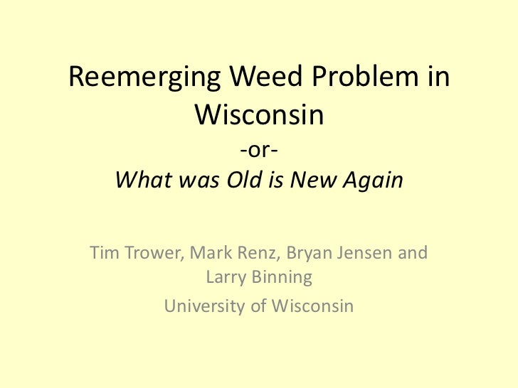 Reemerging Weed Problem in Wisconsin -or-What was Old is New Again<br />Tim Trower, Mark Renz, Bryan Jensen and Larry Binn...