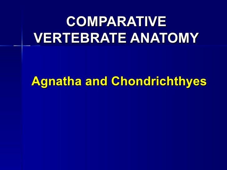 COMPARATIVEVERTEBRATE ANATOMYAgnatha and Chondrichthyes
