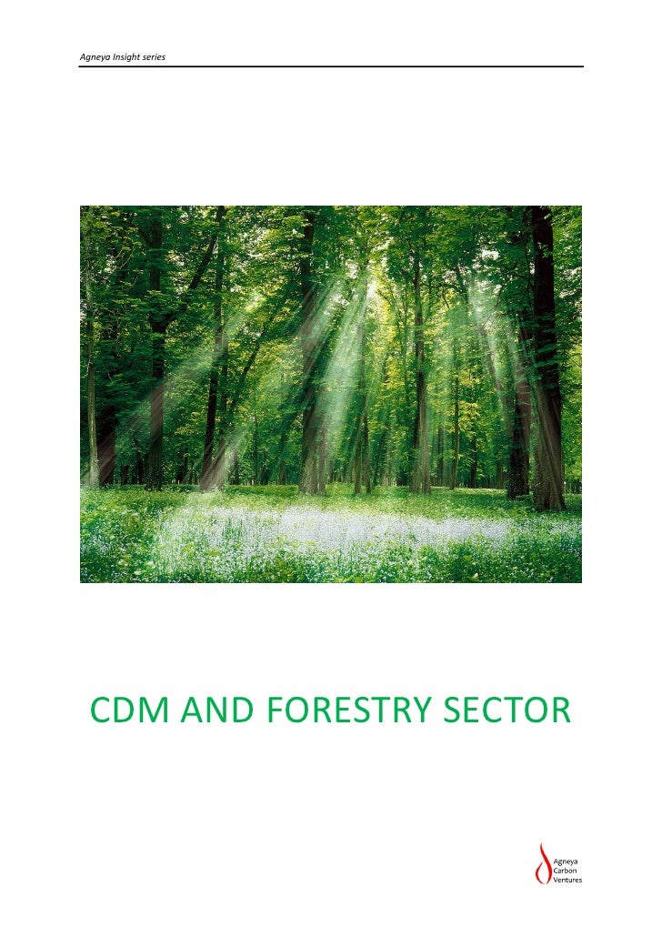 Agneya Insight series  CDM AND FORESTRY SECTOR