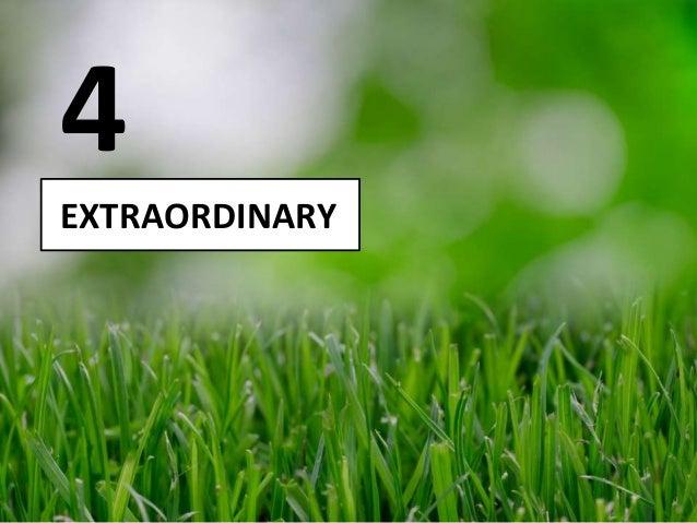 EXTRAORDINARY 4
