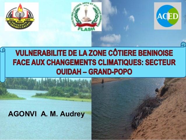 AGONVI A. M. Audrey