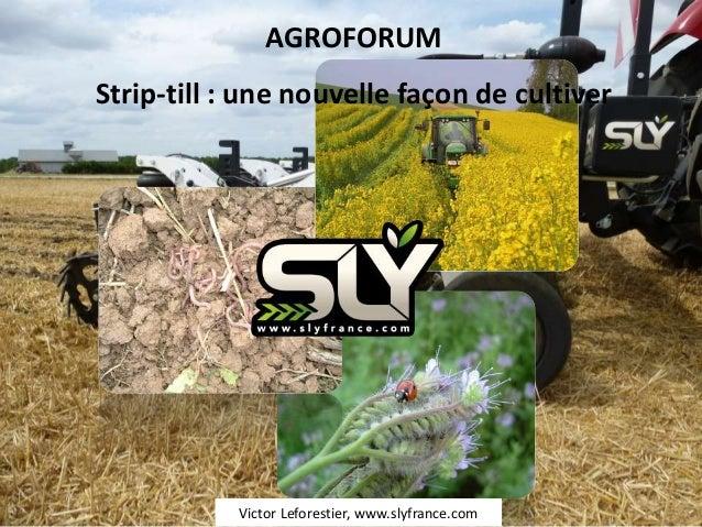 AGROFORUMStrip-till : une nouvelle façon de cultiver           Victor Leforestier, www.slyfrance.com