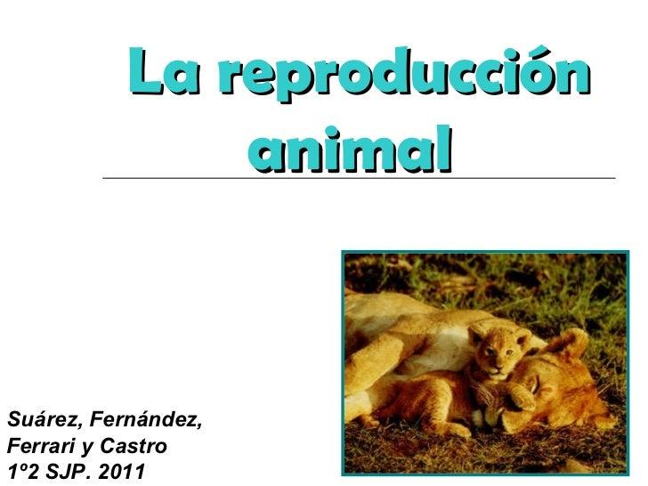 La reproducción animal   Suárez, Fernández,  Ferrari y Castro 1º2 SJP. 2011