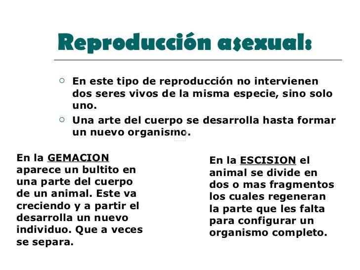 Reproducción asexual:   <ul><li>En este tipo de reproducción no intervienen dos seres vivos de la misma especie, sino solo...