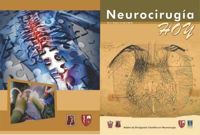 Neurocirugía Hoy, Vol. 4, Numero 15