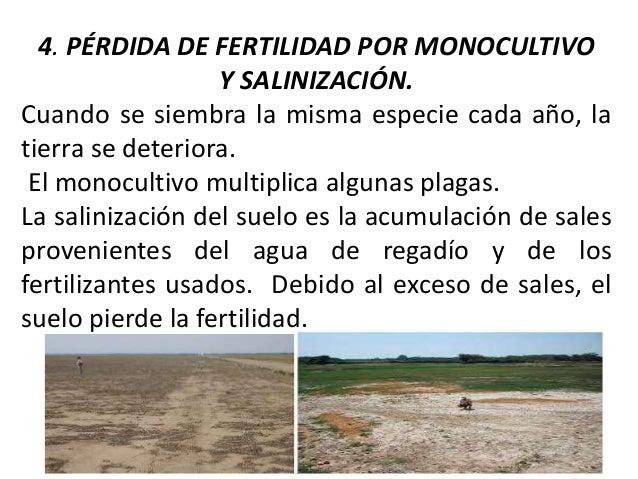 Agotamiento de los suelos y recursos for A que se denomina suelo
