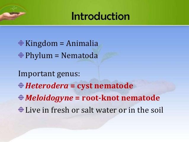 AGR154 CHAPTER 4 - NEMATODES Slide 3