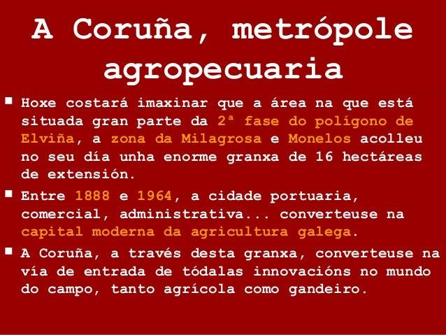 A Coruña, metrópole agropecuaria  Hoxe costará imaxinar que a área na que está situada gran parte da 2ª fase do polígono ...