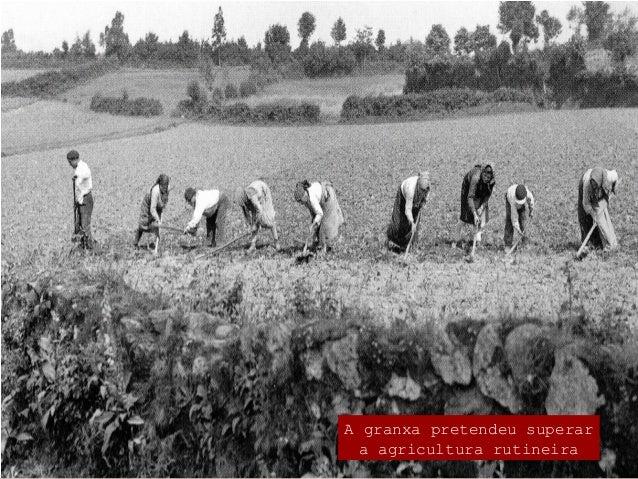 Labregos e cidadáns  A mellora e reforma do agro galego condúcese por varios camiños: a loita contra o foro, defendendo a...