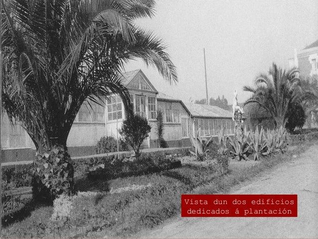 """Na Granxa creouse a Coñecida """"raza rubia galega"""""""