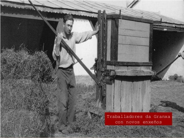 Os logros da Granxa O lúpulo nas Mariñas  Instaurouse o cultivo de lúpulo. Importado de Gran Bretaña en 1913 por Hernánde...