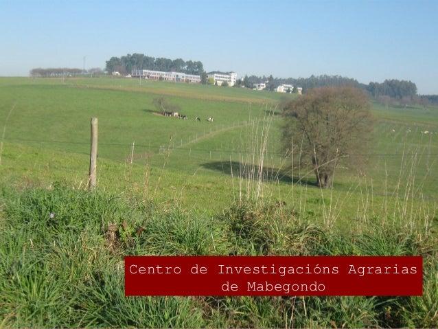 A granxa experimental de Monelos