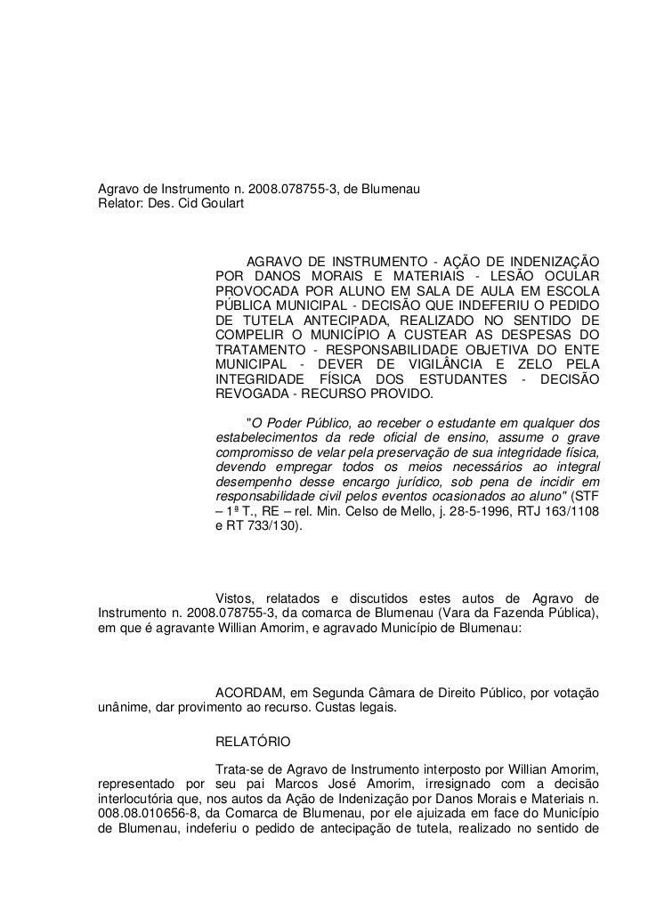 Agravo de Instrumento n. 2008.078755-3, de BlumenauRelator: Des. Cid Goulart                       AGRAVO DE INSTRUMENTO -...
