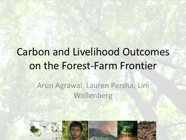Carbon and Livelihood Outcomes on the Forest-Farm Frontier<br />Arun Agrawal, Lauren Persha, Lini Wollenberg<br />