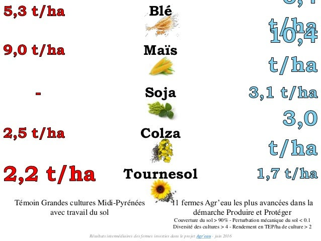 Témoin Grandes cultures Midi-Pyrénées avec travail du sol 11 fermes Agr'eau les plus avancées dans la démarche Produire et...