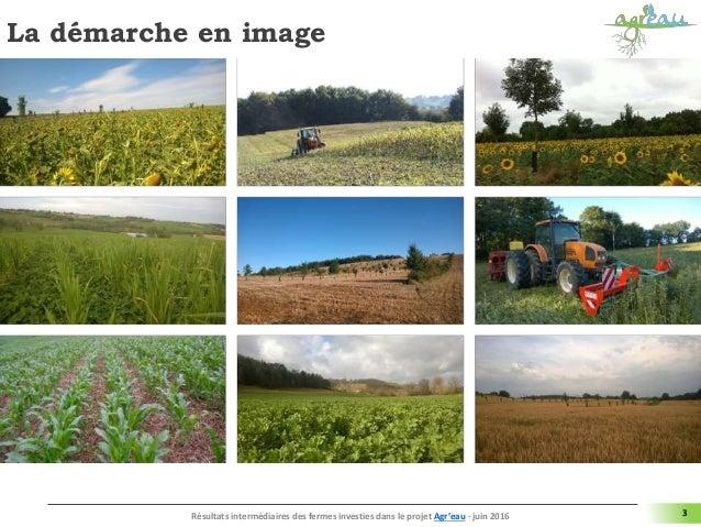 La démarche en image 3Résultats intermédiaires des fermes investies dans le projet Agr'eau - juin 2016