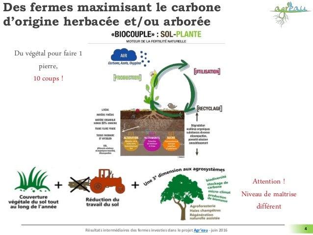 Des fermes maximisant le carbone d'origine herbacée et/ou arborée 4 Attention ! Niveau de maîtrise différent Résultats int...