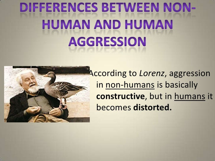 According to Lorenz, aggression  in non-humans is basically  constructive, but in humans it  becomes distorted.
