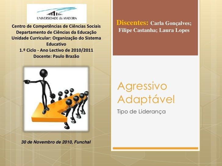 Agressivo Adaptável<br />Tipo de Liderança<br />Discentes: Carla Gonçalves; Filipe Castanha; Laura Lopes<br />Centro de Co...