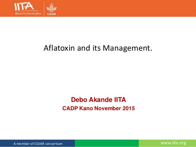 www.iita.orgA member of CGIAR consortium Aflatoxin and its Management. Debo Akande IITA CADP Kano November 2015